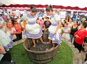 Праздник вина в Аргентине.