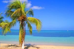 Лазурный берег Ямайки