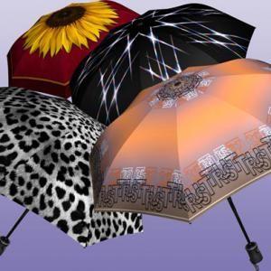 Зонт-лучшее средство от дождя