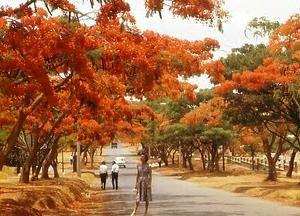Парк «Munda Wanga»