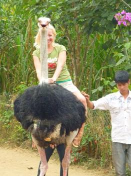 Катание на страусе