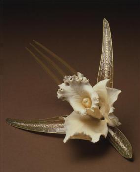 Сувенир из черепашьего панциря