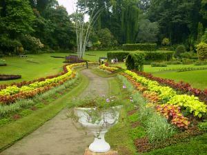 Королевский сад в Шри-Ланке