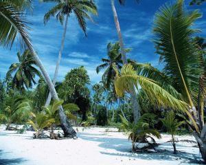 Остров черепах,Гаити