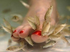 """Ножки на """"съедении""""рыбок"""