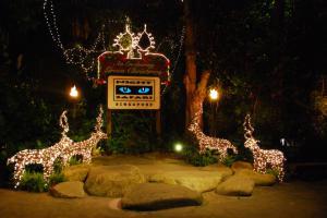 Ночной сафари-зоопарк