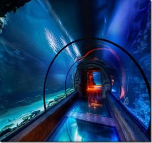 Подводный аквариум