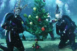 Новый год под водой