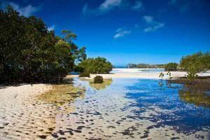 Остров Фрейзер в Квинсленде