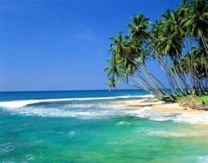 Солнечная Шри-Ланка