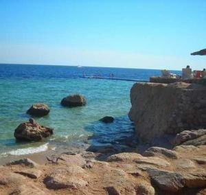 Коралловый пляж в Шарм Эль Шейхе