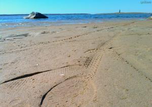 Пляж Хаапсалу