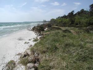 Пляж Сандхаммарен