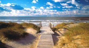 Пляж в Неринге