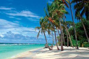 Пляж Blue Orchids