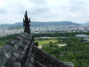 Крыша замка