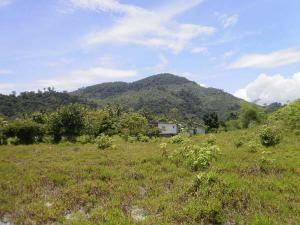Национальный Парк Гунунг-Палунг