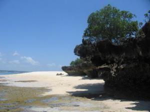 Пляж Бонгойо
