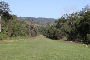 Дорога к Бонампаку
