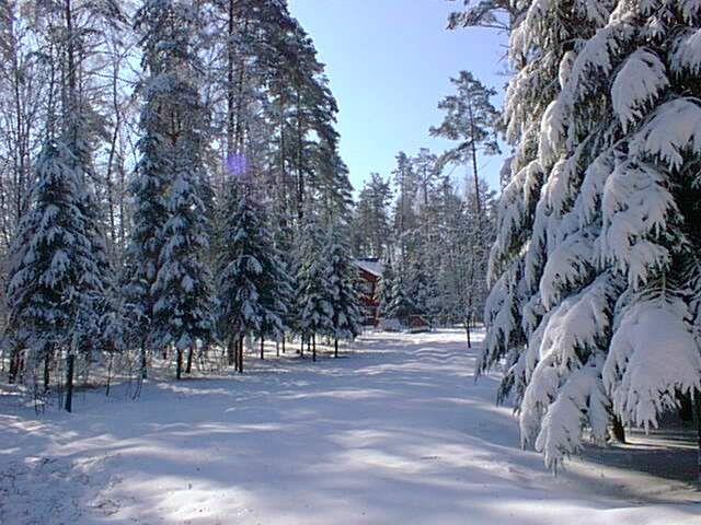 отдых подмосковье зимний фото в
